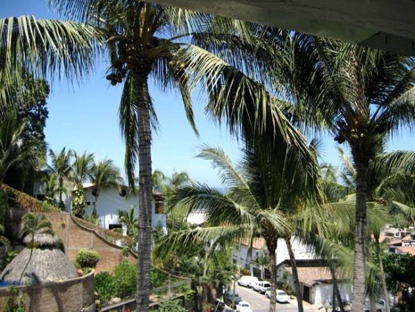 loma mar gay singles See the homes for sale in loma mar and get a head start viewing open houses browse our other homes for sale in california at re/max.