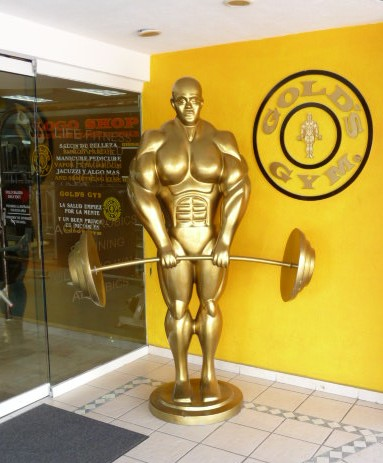Puerto Vallarta Gyms Spas Yoga Massage WorkOut - Gay Vallarta Gym