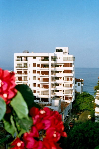 puerto vallarta abbey gay hotel%2023a gay cruising rome. In Rome, the saunas Apollyon, Mediterranean and EMC Club ...