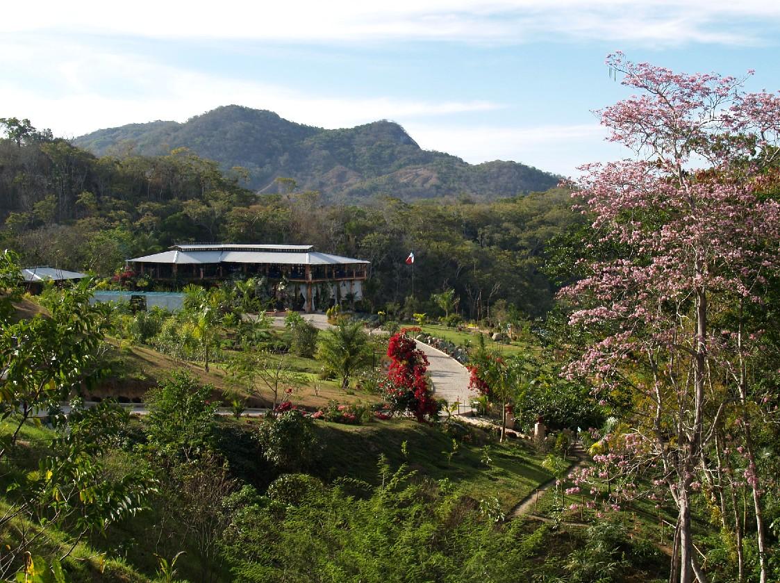Puerto Vallarta Botanical Gardens Photos Gay Puerto Vallarta