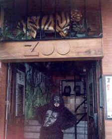 zoo bar disco puerto vallarta dance club downtown